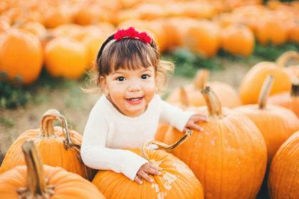 pumpkin patch slo family photos