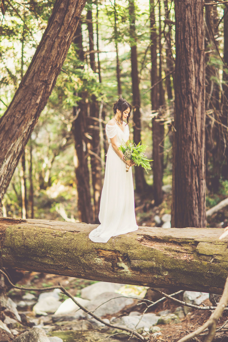 big sur wedding elopement photographer