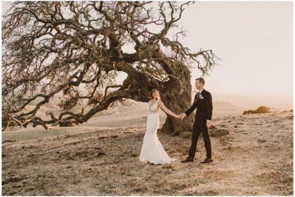spreafico farms wedding san luis obispo